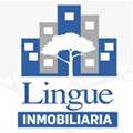 Logo Lingue